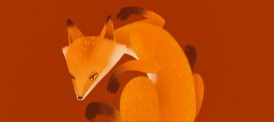 slider template fox